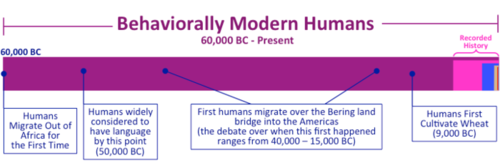 Human-prehistory-Timelines+342.png