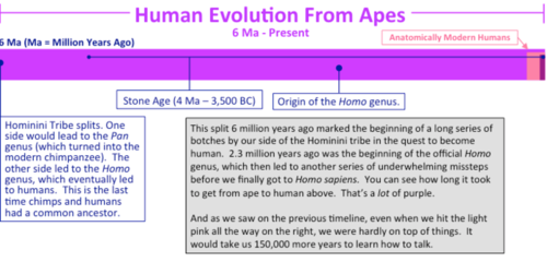 60-millions-human-prehistory-Timelines+342.png